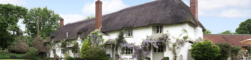 Thatch Property Insurance